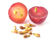 ترک شیمی درمانی با هسته انگور