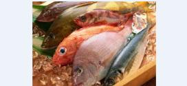 مصرف غذا های دریایی