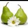 تاثیر این میوه ها در هضم غذا