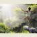 فوائد گوناگون یوگا بر بدن