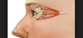 تمرین برای قوی شدن ماهیچه های چشم
