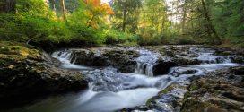 برنامه شاد و مهیج آبشار شیرین رود