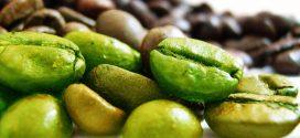 قهوه سبز چیست؟