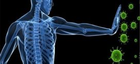 هفت کلید  سلامتی پایدار