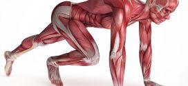 ۶تمرین آسان برای از بین بردن درد پشت
