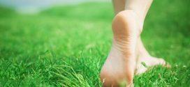فواید جذاب راه رفتن روی چمن با پای برهنه