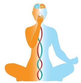 تمرینات پرانایاما در ۳ مرحله یا سطح قابل اجرا است