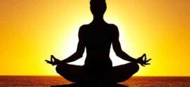 دوره های آموزشی یوگا(مبتدی تا پیشرفته)